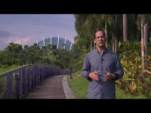 حدائق الخليج بسنغافورة.. رمز الجمال والإبداع  - نشر قبل 5 ساعة