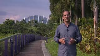 حدائق الخليج بسنغافورة.. رمز الجمال والإبداع