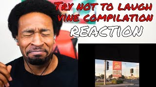 Try Not To Laugh Challenge (Funny Vines) REACTION - DaVinci REACTS