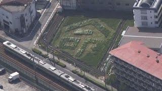「命」に風化防止の願い JR尼崎脱線事故、畑に文字