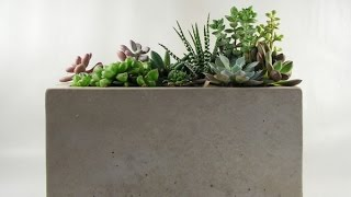 Tip Of The Day: Concrete Planter