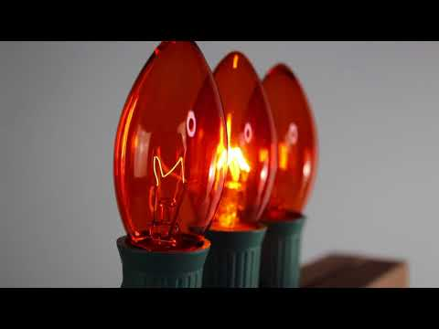 Orange C9 Twinkle Bulbs   Incandescent
