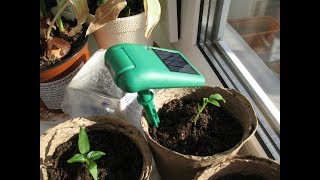 Декоративное оформление сада! Изумрудный светильник девайс! Подсветка растений на солнечной батарее!