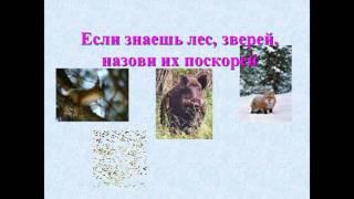 презентация лес и человек 4 класс