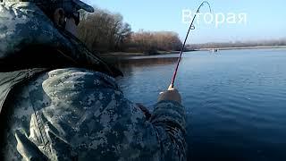 Ловля щуки , рыбалка на реке Днепр  ,  устья реки Рось , Черкасская область , с.Крещатик