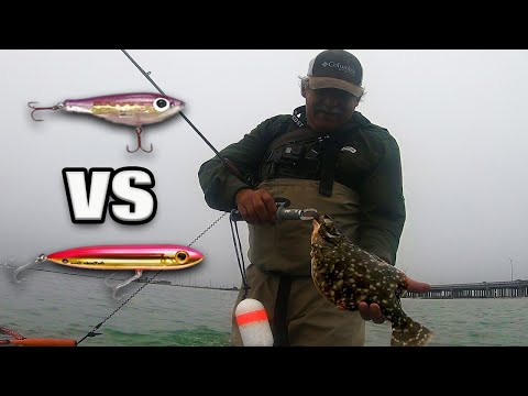 Winter Wade Fishing Topwater VS Corky! (Surprising Results) | Flounder, Trout, And Drum