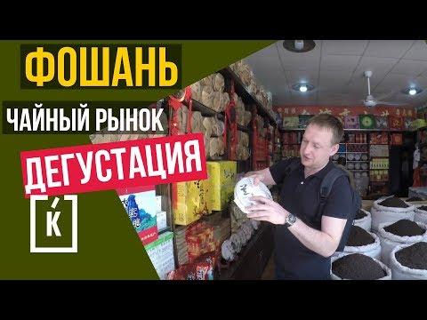 говорящий попугай КЕША - YouTube