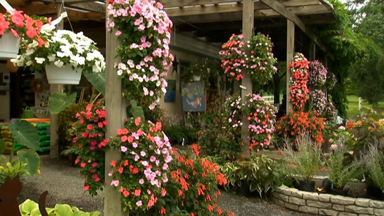 How to Hang Plant Pouches | P. Allen Smith Classics - YouTube