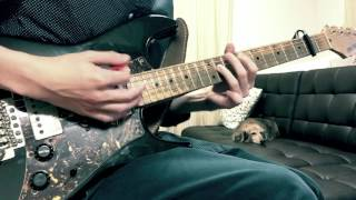 PPAP(Pen-Pineapple-Apple-Pen)ペンパイナッポーアッポーペン/PIKOTARO(ピコ太郎) Guitar Cover