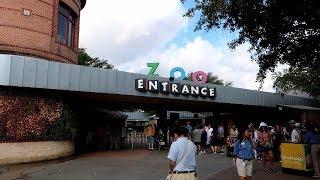 ヒューストン動物園へ行って行きました。アメリカ生活・テキサス暮らし編 #143