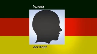 Урок немецкого языка №1| Части тела.  Новая методика обучения
