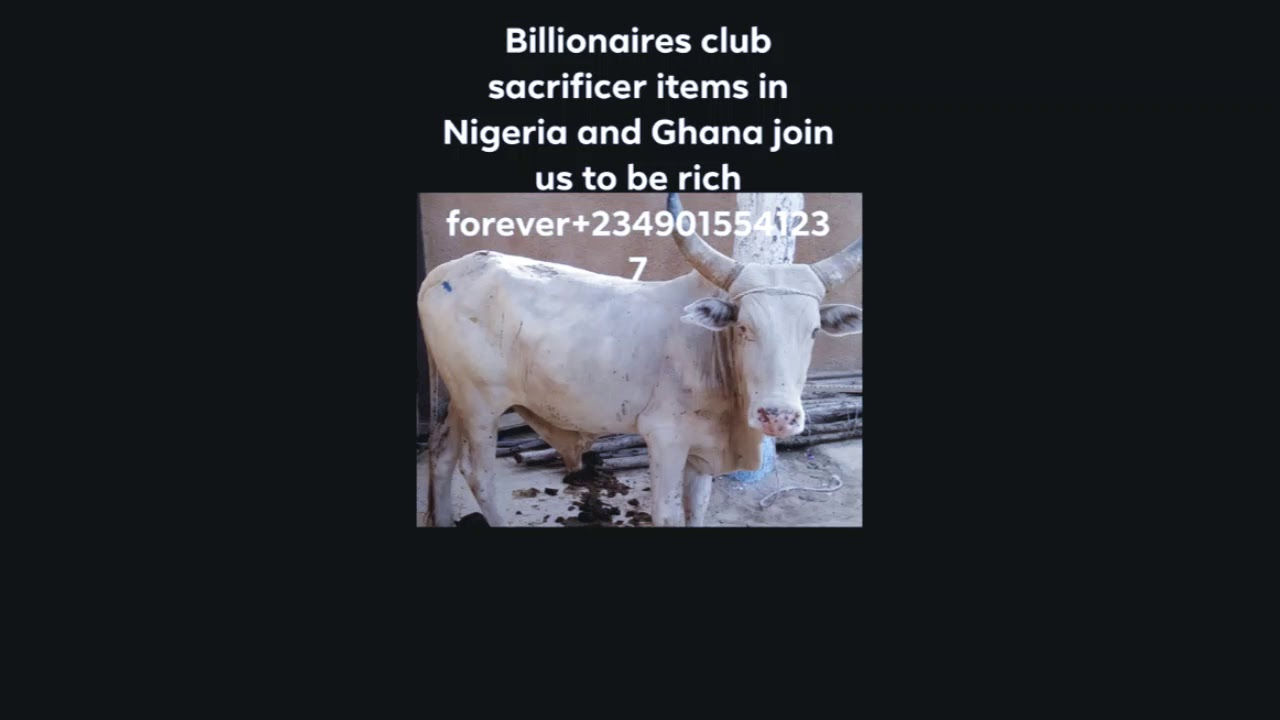 HOW TO JOIN OCCULT TO BE RICH FOREVER AND FIRMIN NIGERIA+