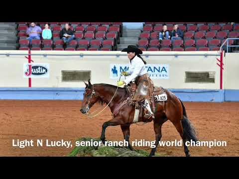 2017 AQHA Senior Ranch Riding