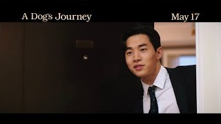 A Dog's Journey (2019) - Official Movie Trailer with Henry (헨리)