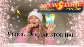 Vlogg: Dollar store hal