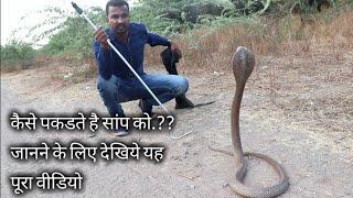 कैसे पकडते है सांप, जानने के लिए इस वीडियो को आखरी तक देखिये   How to catch snake..?