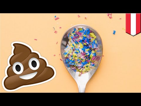 Humans are now pooping microplastics, study finds TomoNews