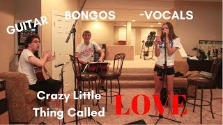 Guitar. Vocals. Bongos. (Crazy Little Thing Called Love acoustic band cover)