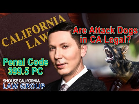 Penal Code 399.5 PC - Are attack dogs illegal in California?
