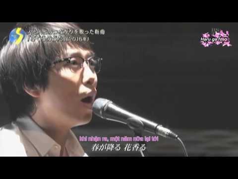 Sakura no uta - Yu Takahashi (Vietsub)