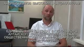 видео Как спасти лес в Алтайском крае