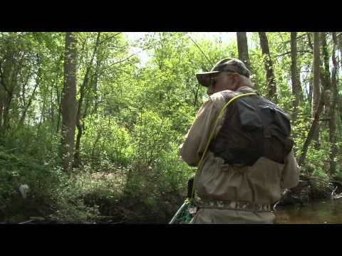 Brown Trout Fishing - Jim Bedford