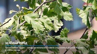 КРТВ. Зелёный город