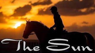 The Sun || Equestrian Chill Music Video ||