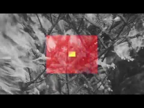 TROUSSEAUX - ESTUARIES [OFFICIAL VIDEO from CZELUŚĆ VOL. #1]