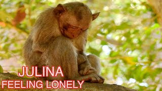 JULINA HAS FEELING LONELY, MUM NOT SO MUCH CARE AS JAYDEN  #MONKEY#