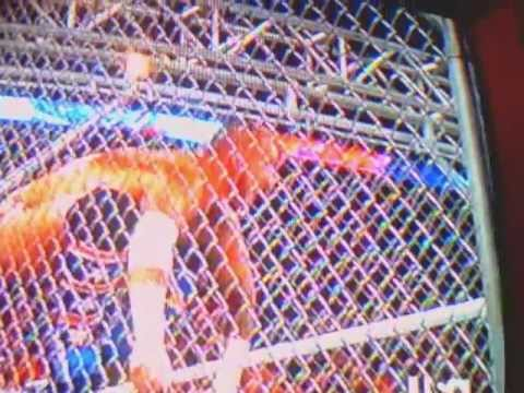 Cmpunk vs jerry the king lawler in a steel cage match monday night raw