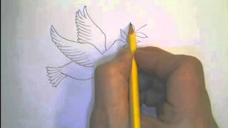 "Drawing Children Into PEACE - ""Dove with an olive branch"""