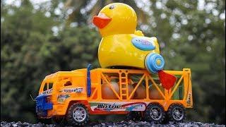Duck mother - Duckling Hatching Eggs Duck and Trailer Truck