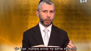 פרשת וילך - הרב זמיר כהן