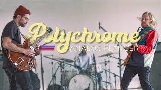 Walrus Audio Pedal Play: Polychrome Analog Flanger