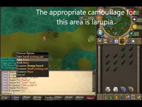 RuneScape - Hunter Guide - Swamp Lizards