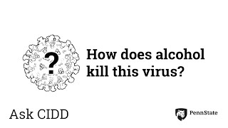How does alcohol kill this virus? | Ask CIDD