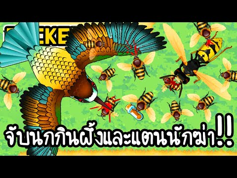 Pocket Bees #3 - จับนกกินผึ้งและแตนนักฆ่า!! [ เกมส์มือถือ ]