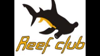Морской аквариум киев интервью у директора Reef-Club(, 2016-01-26T11:55:33.000Z)