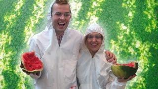 بالفيديو.. اليوم العالمى للبطيخ.. مصر أول من صدر البطيخ للعالم منذ 5000 عام