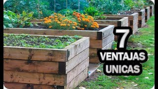 7 Ventajas Únicas De Cultivar En Bancales Elevados || La Huertina De Toni