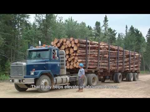 The Forestry Industry In Atlantic Canada