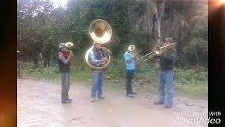 Descargar Despacito Con Banda Triunfo Hidalguense