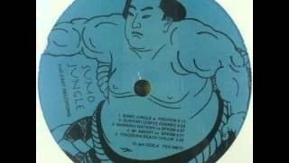 Soichi Terada - Sumo Jungle - 寺田創一
