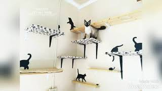 Cats Of Spotted Felines