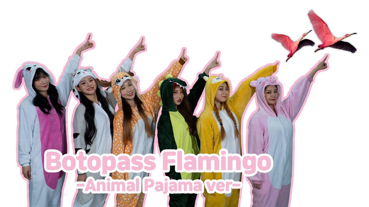[BOTOPASS Challenge](Eng.Spn.)Penalty(벌칙)!! Flamingo Dance in Pajamas(동물잠옷 입고 플라밍고)!!