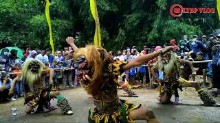 BUTO GALAK GEDRUK Live Pasar Kali Pong Salaman Magelang