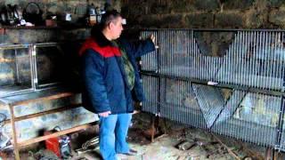 Купить первоклассные клетки для кроликов.(, 2016-01-25T18:26:02.000Z)