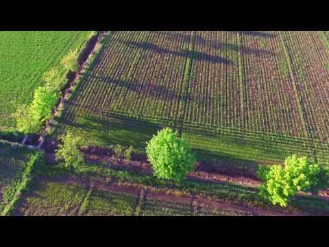 pianura natura    con drone