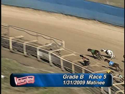 Victoryland 1/31/09 Matinee Race 5
